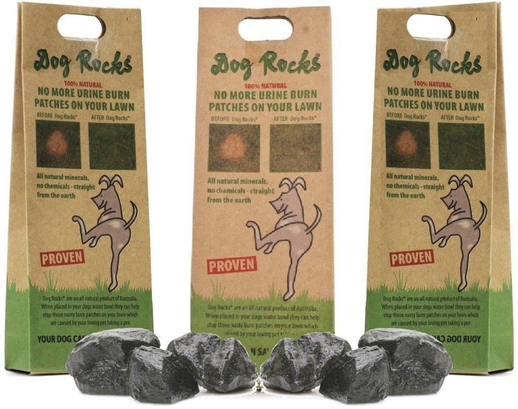 Dog Rocks - Dog Urine Killing Grass
