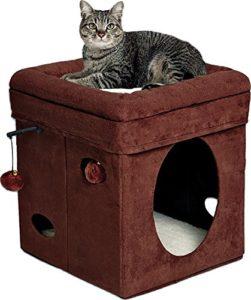 cat-cube