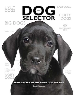 The Dog Selector How to Choose the Right Dog for You