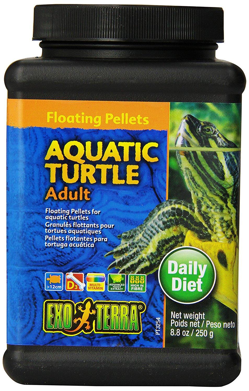 aquatic turtle food