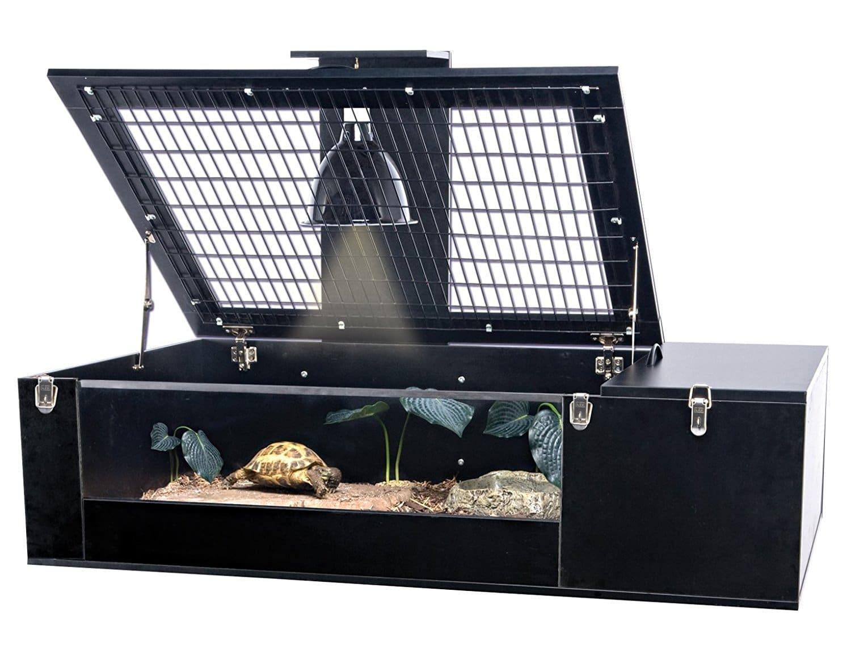 land turtle habitat