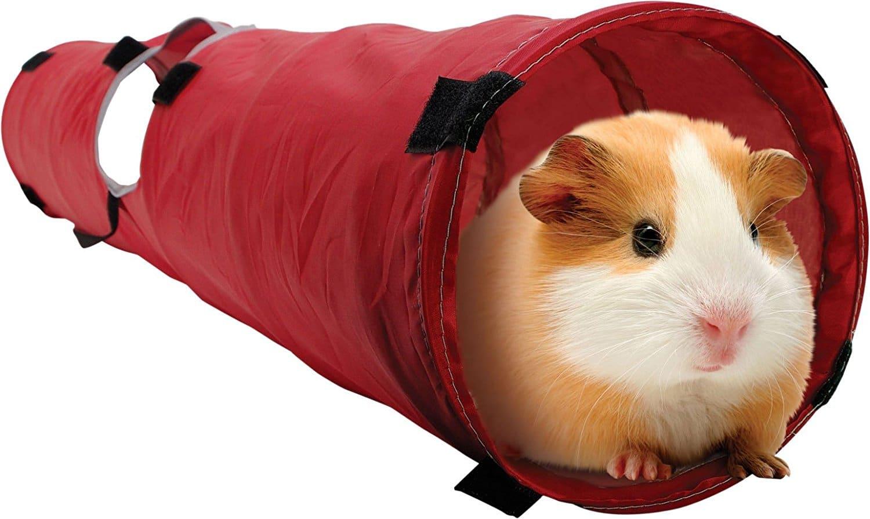 guinea pig pet tunnel