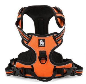 Juxzh Dog Harness