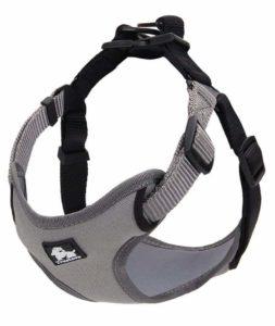 S-Power Dog Harness