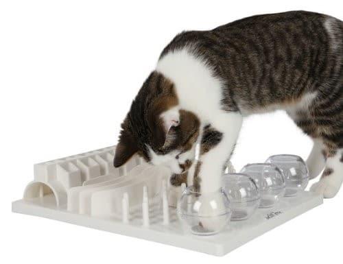 cat activity board