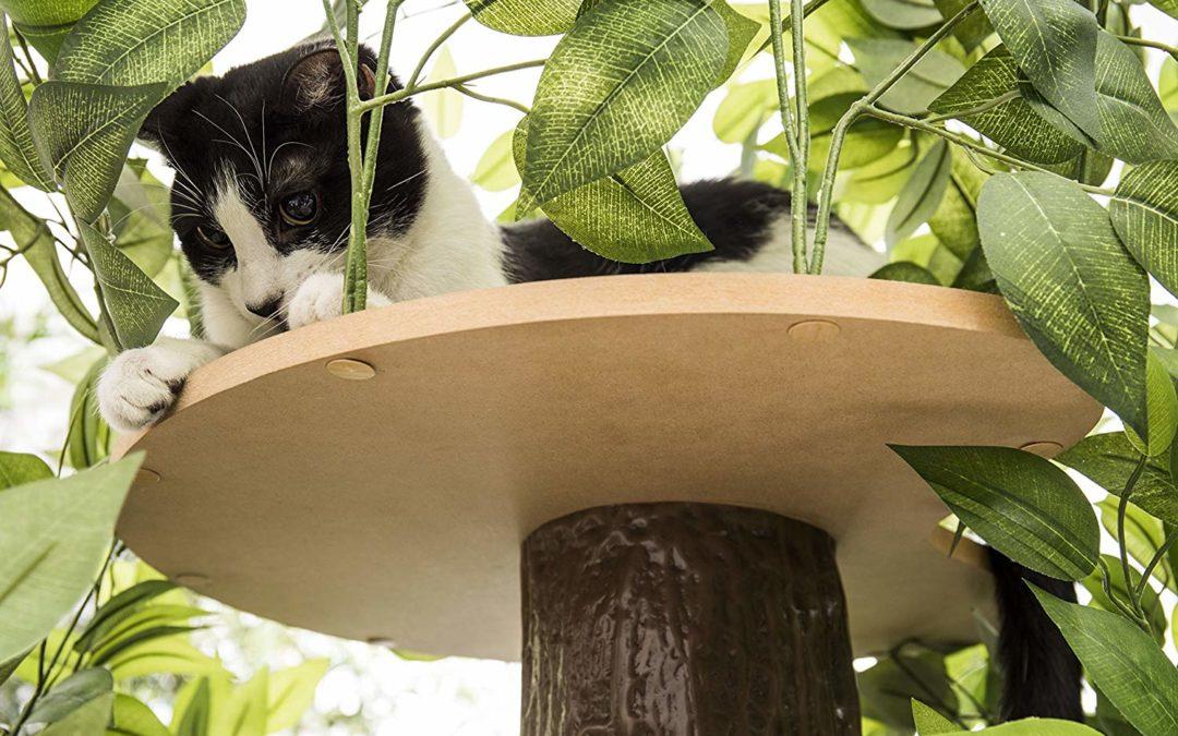 10 Best Cat Trees and Cat Condos in 2021