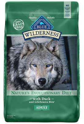 best dog food for senior golden retrievers