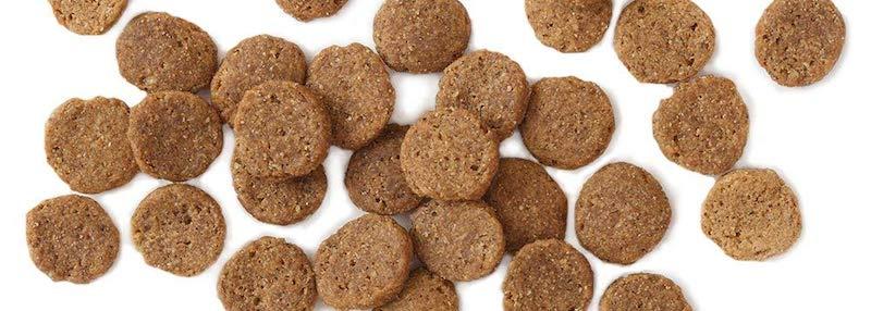 earthborn dog food for bulldogs