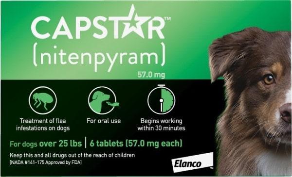 capstar flea tablets for dogs-min
