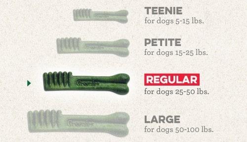 greenies dental bones-min