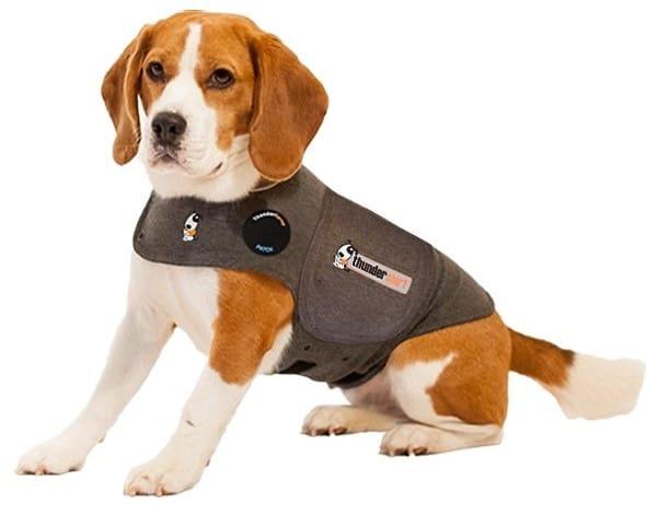 thunder shirt for dog anxiety