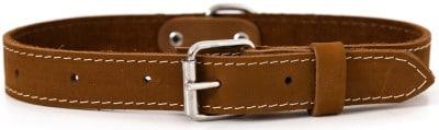 Euro-Dog Traditional Leather Dog Collar