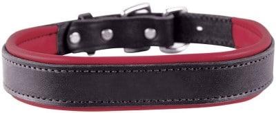 Perri's Black Padded Leather Dog Collar