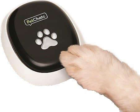 PetChatz HDX Dog Camera